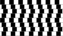 ¿Líneas paralelas?
